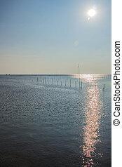 Sun light on the sea.