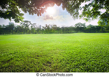 sun light over sky in beautiful green grass field of public park