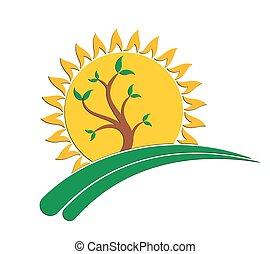 sun Logo with tree.
