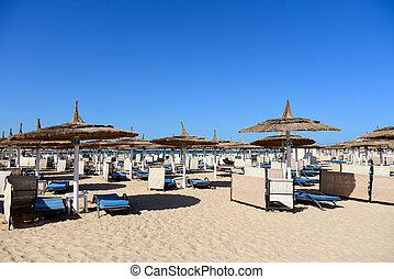 Sun loungers on the sea sandy beach
