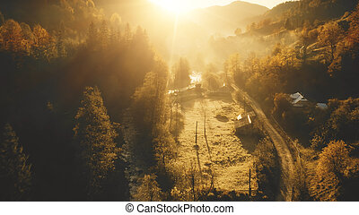 Sun mountain forest at village aerial. Autumn nobody nature landscape. Pine trees at houses, cottages. Rural road at mount valley. Cinematic vacation at Carpathians, Ukraine, Europe. Drone shot