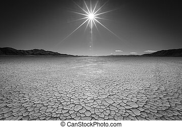 The Black Rock Desert in Northern Nevada is one of the most desolate places I have ever been - Miles of flat cracked playa in the summer and almost a shallow lake of wet mud in the winter. But, once a year an entire city is built there for a week.
