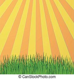 Sun rays green
