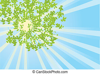 Sun rays in green leaves.Vector abstract illustration of sky