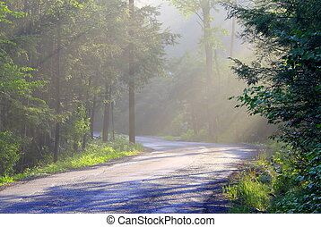 Sun rays on country road