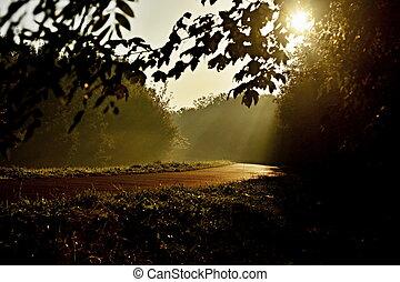 Sun rays on river