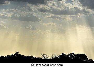 Sun Rays Sky