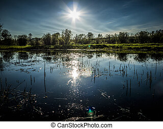Sun Reflecting in Small Pond