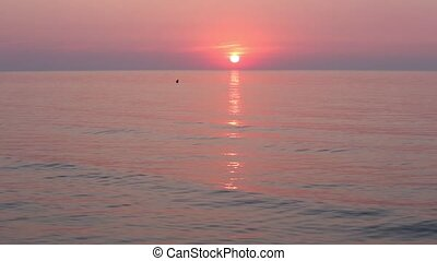 Sun Rising Over Horizon And Pink Se