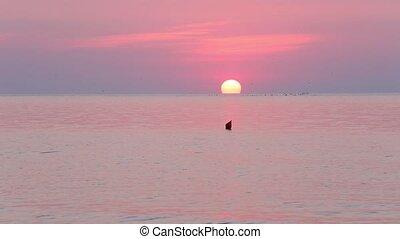 Sun Rising Over Sea Horizon