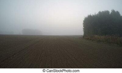 Sun rising through the fog on field - Sun rising through the...