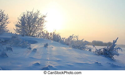 sun rising - winter morning landscape