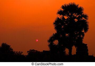 sun set at Angkor Wat