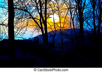 Sun Setting Behind Trees in Winter
