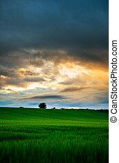 Sun setting in Scotland