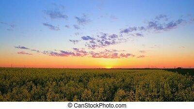 Sun Shining At Sunset Sunrise Over Horizon Of Spring...