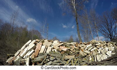 Sun shining on cut firewood, time lapse 4K - Sun shining on...