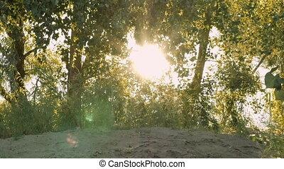 Sun shining through tree branches on sandy beach