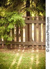 Sun shining through wooden fence