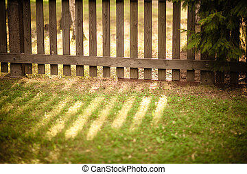 Sun shining through wooden fence