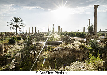 Sunbeam after rain in ruins in Tyre, Sour, Lebanon