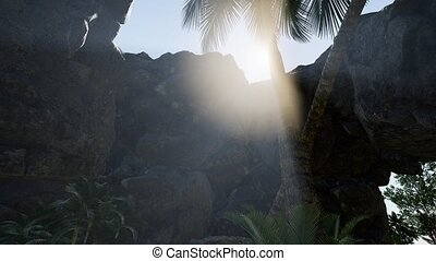 Sunbeam in cave with palms