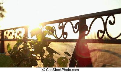 Sunbeam running across lattice