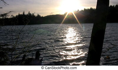 sunbeams - sunset through trees over lake and dock