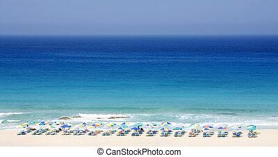Sunbed ultramarine - Sunbeds stand in regimented rows beside...