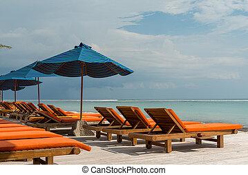 Sunbeds at the beach