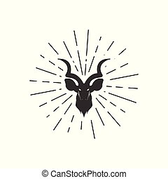 sunburst, 鹿, 背景