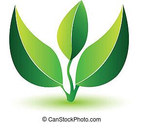 sunde, logo, leafs-, grønnes plant