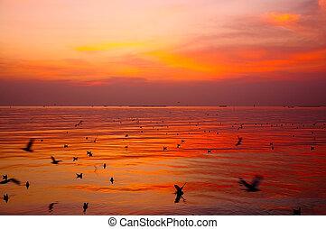 sundown - Sundown on the sea