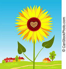 sunflover_heart(10).jpg - Sunflower with heart against...