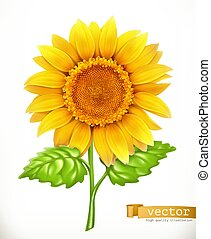 Sunflower. 3d vector icon