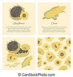 Sunflower and corn vector greeting - Sunflower, corn and...