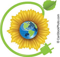 Sunflower and Globe