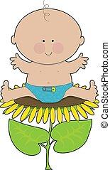 Sunflower Baby Boy