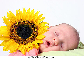 Sunflower baby - Sleeping baby next to a beautiful sunflower