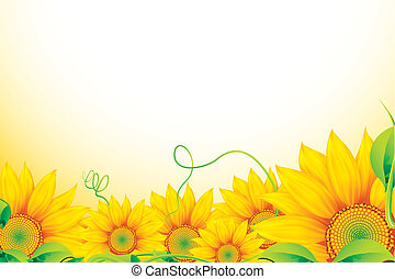 illustration of bunch of sunflowers on abstract background