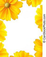 Sunflower border frame