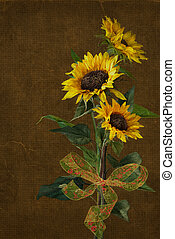 sunflower bouquet with bow - Sunflower bouquet and bow with...