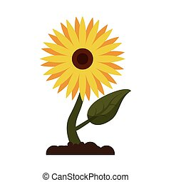sunflower flora leaves icon