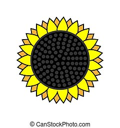 sunflower icon on a white isolated background. Vector image