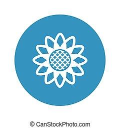 sunflower icon on white background