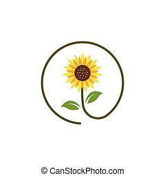 Sunflower  icon vector illustration design