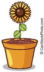 Sunflower in clay pot illustration