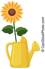 Sunflower in watering can cartoon style on white background