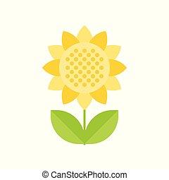Sunflower isolated on white background vector illustration