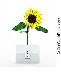 sunflower over energy plug